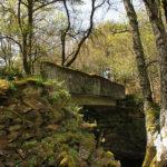 Puente río Asneiro