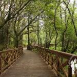 Paseo fluvial Río Anllóns (Laracha)