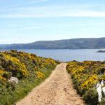 Ruta do Cabo Prior (Ferrol)