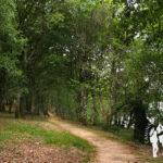 Ruta embalse de Vilasouto (O Incio)