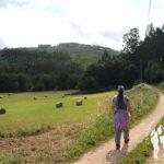 Ruta Río Masma (Barreiros)