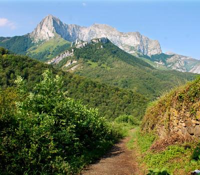 PR.AS 213 Valle de Ponga (Asturias)