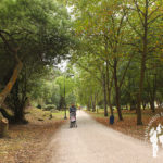 Parque forestal ría de Navia