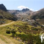 Valle Requexón
