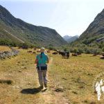 Valle de Entrevados
