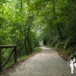 PR.AS 62 Ruta del Alba (Asturias)