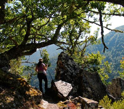 Lagunas de Muniellos (Asturias)
