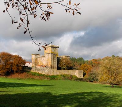 Castillo Pambre (Palas de Rei)