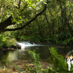 Río Lambre