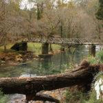 Puente madera río Sor