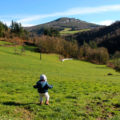 Fervenza Pozo da Ferreira (Lugo)