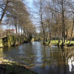 Paseo Fluvial Río Asma (Chantada)