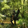 Senda Botánica Río Mera (O Pino)