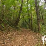 Ruta dos Muíños do Río Medio (Miño)