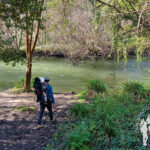 Paseo fluvial río Mero (Cambre)