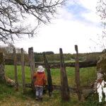 Ruta das Chousas (Lugo)