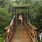 Puente de madera de la urbanización Verseles