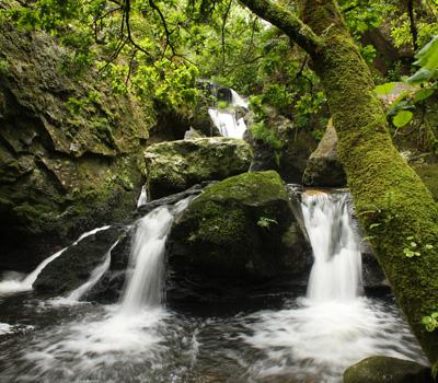 Cataratas de Teo (Cacheiras)