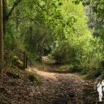 Aldea de Vilar, comienzo ruta