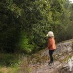 Camino pozas del río Sar